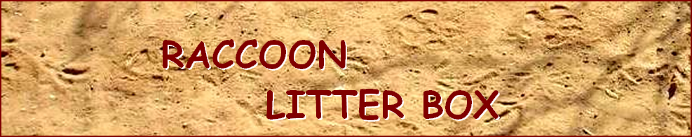 RACCOON  LITTER BOX