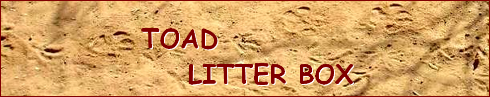 TOAD  LITTER BOX
